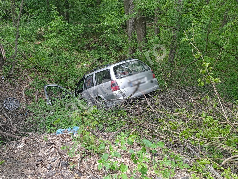 Mașină ieșită în afara carosabilului lângă Gradina zoologică